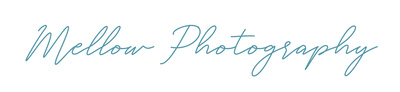 This is an image of Mellow Photography Logo
