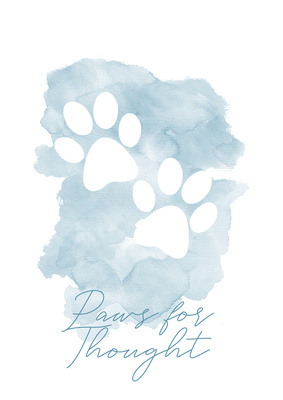 Image of two paw prints with text for Pet Photography session